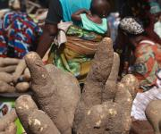 Yam tuber are displayed for sale in 'Oja Oba' market in Ilorin metropolis in Nigeria's central state of Kwara, November 6, 2012.