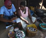 A family planning mobilizer speaks with a fish monger, Grace Olayiwola, during a visibility parade near Orolodo primary health centre in Omuaran township in Nigeria's central state of Kwara, November 5, 2012.